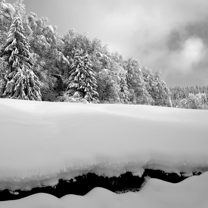 ZIG-SNOW2-003.jpg