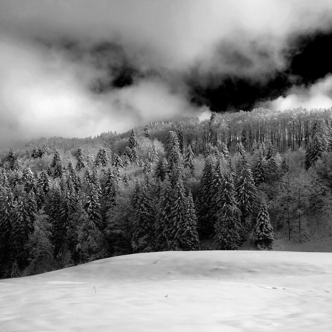ZIG-SNOW2-002.jpg