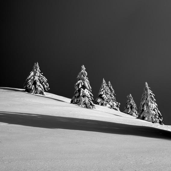 ZIG-SNOW2-013.jpg