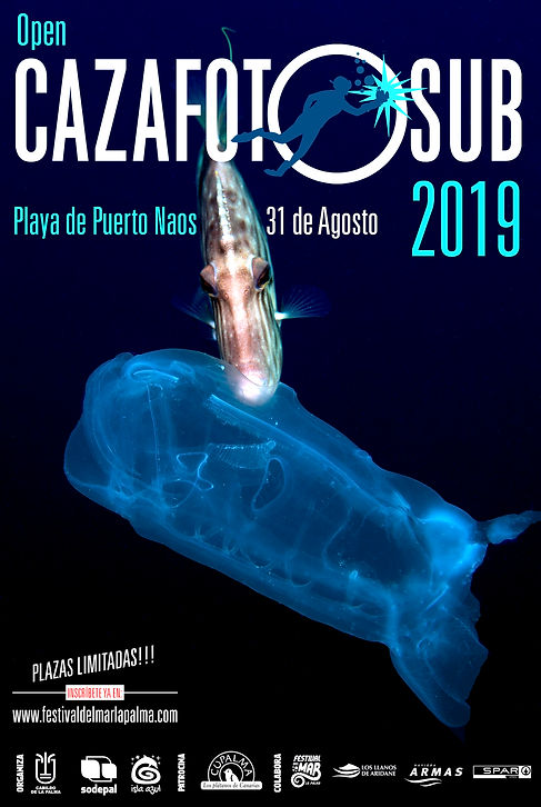 cartel cazafotosub 2019 (Large).jpg