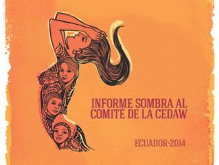 Informe Sombra CEDAW 2014