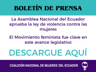 Asamblea Nacional del Ecuador aprueba ley de violencia contra las mujeres  Movimiento feminista clav