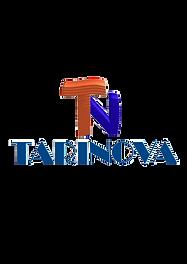 LOGO TARINOVA transparente completo(1).p