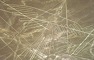 Птица-Кондор в долине Наска.jpg