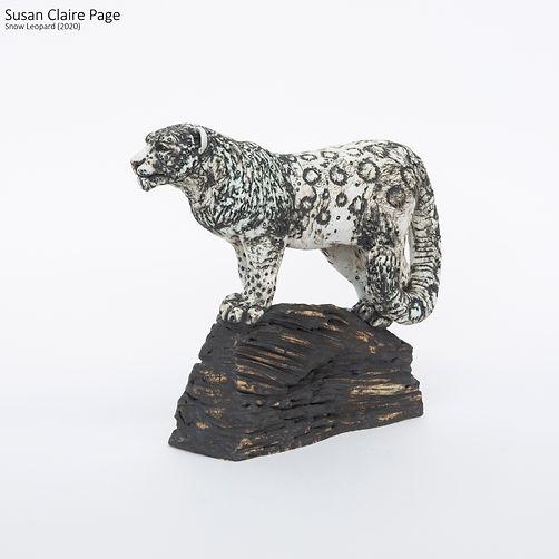 Snow Leopard on Rock.jpg