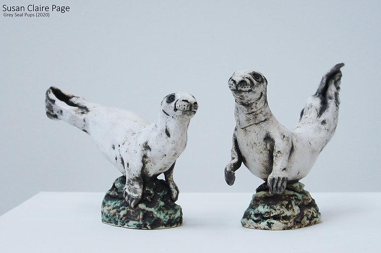 Grey Seal Pups.jpg