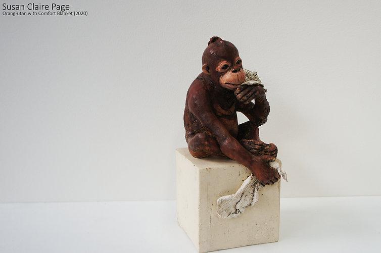 Orang-utan with Comfort Blanket.jpg