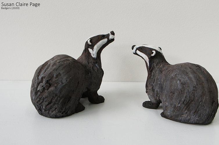 Two Badgers.jpg