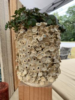 coral planter