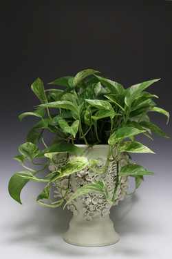 Growing Planter