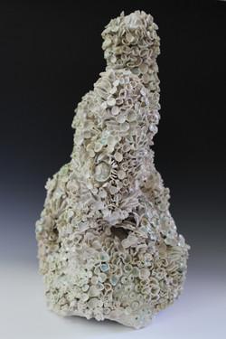 White Shine Reef