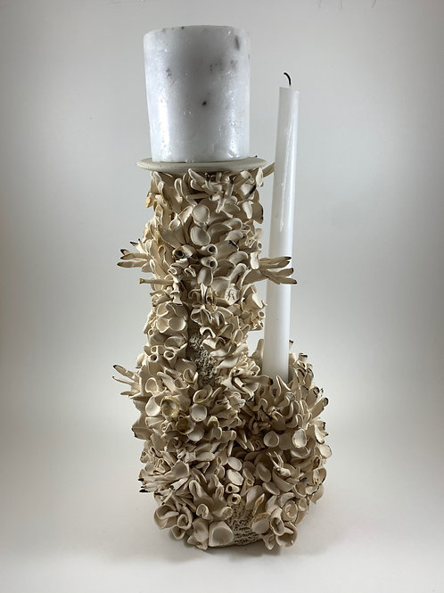 Double Candle Coral Holder