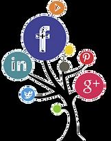 Social Media Management - The Woodlands