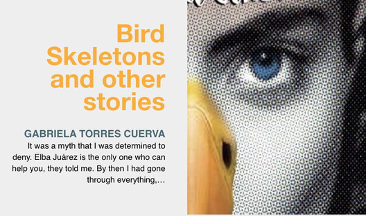 Bird Skeletons and other stories, an excerpt of the most recent book by Gabriela Torres Cuerva.lite
