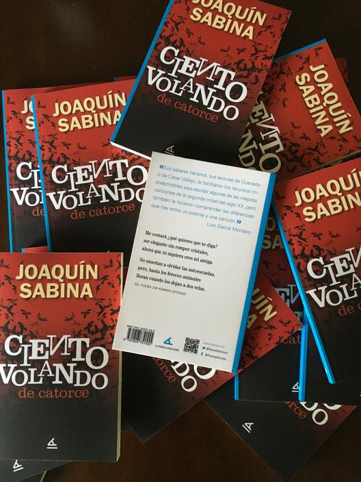 Ciento volando de catorce de Joaquín Sabina