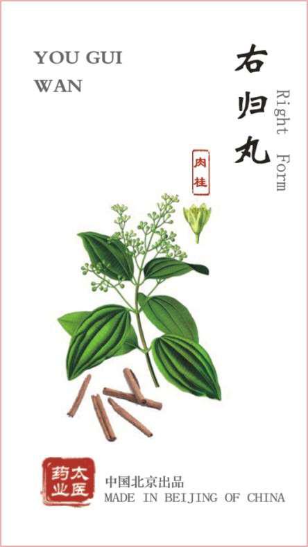 Image4 (5)