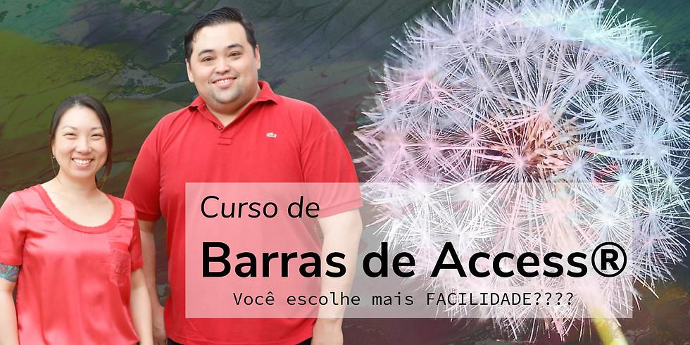 Classe de Barras de Access®