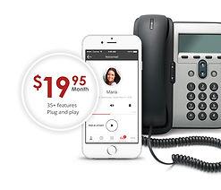 business-phone-service-dollar-19.jpg