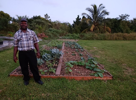 Connecting the Gardening Dots in Abaco