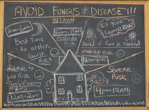 Avoid Fungus.JPG