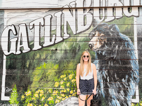 A Getaway to Gatlinburg: What to see and do in Eastern Tennessee