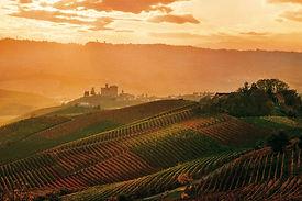 Piemonte - Langhe - Гид в Турине Людмила Экскурсии – www.italtour.org