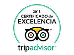 Tripadvisor - Certificate of excellence 2018 Liudmila Guide in Turin Excursions - www.italtour.org