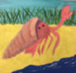 Molly's hermit crab.jpg