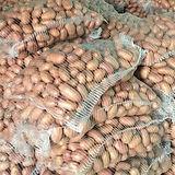potato red skin Pakistan.jpg