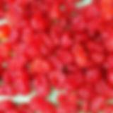 dehydrated tomato SxM.jpg
