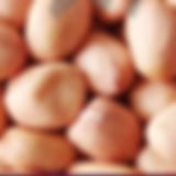 round peanut kernels.jpg