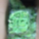 dehydrated papaya slice green color.png