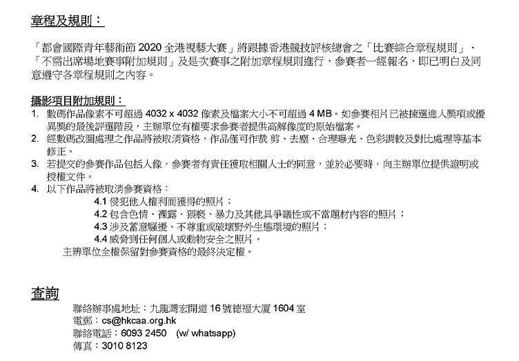 都會國際青年藝術節2020全港視藝大賽(春季)章程及細則_頁面_5.jpg