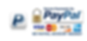 Image of Paypal Secure Payments logo