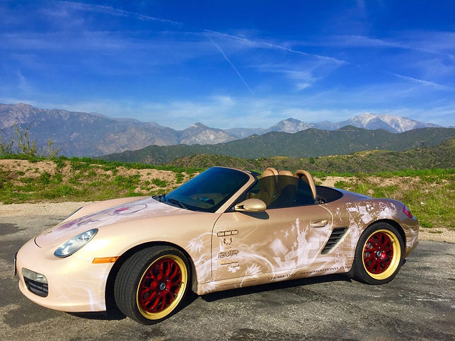 Shaw about vinyl, car wrap, vinyl wraps, orlando florida , super car wrap