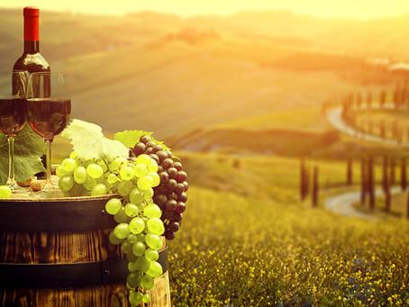 Como harmonizar vinhos com comidas