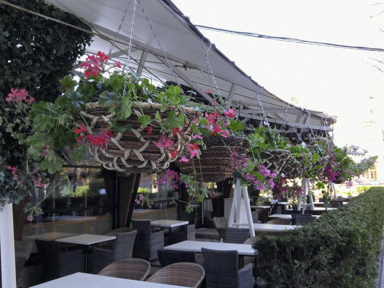 Итальянский ресторан Беллуччи