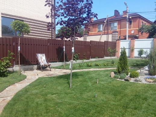 Декоративный сад с приподнятыми грядками