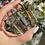 Thumbnail: צמיד סטיל מסמר
