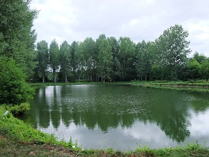 2 carp fishing lakes, private