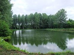 2 carp fishing lakes, private