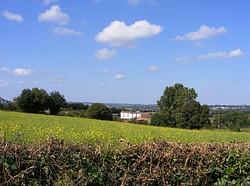 surrounding landscape