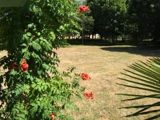 outside photo9