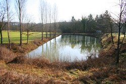 Carp fishing lake at La Grange gites