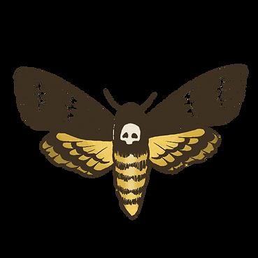 Moth-Minimal.png