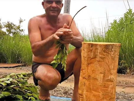 Kakouk, le tisaneur des forêts de La Réunion :)