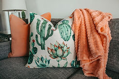 two-pillows-on-gray-couch-1239298.jpg