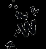 logo the fieldwork zalmroze.png