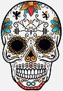 The Skull Candy skull