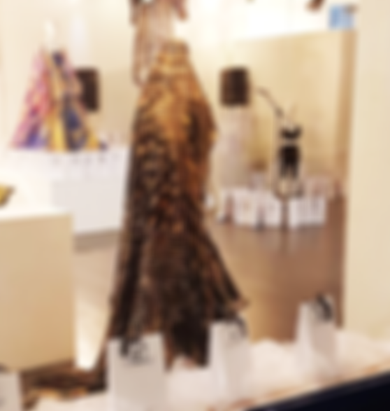 the house of radha art exhibition